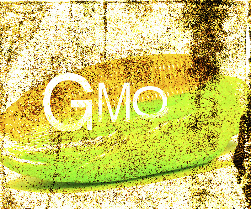 David and Goliath: Long-Term Study Damming GMOs is Republished in Spite of Monsanto Pressure to Suppress Results